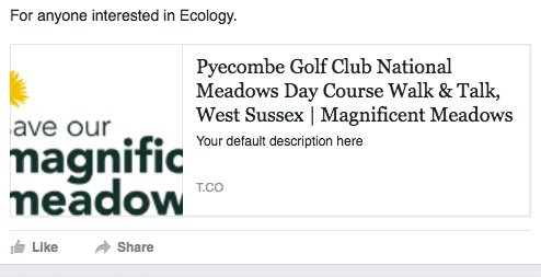 Example of Facebook scraping wrong information when there are no Open Graph tags