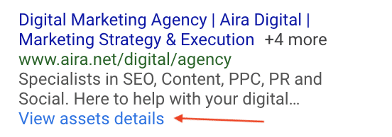 View Asset Details Google